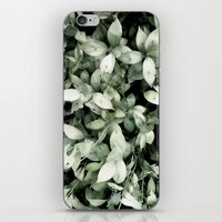 Plant iPhone & iPod Skin