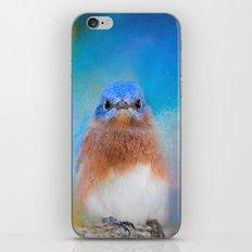 Blue Is Beautiful iPhone & iPod Skin