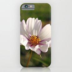 Pink Stripes iPhone 6 Slim Case