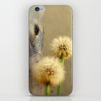 Tree Hugging Dandelions iPhone & iPod Skin