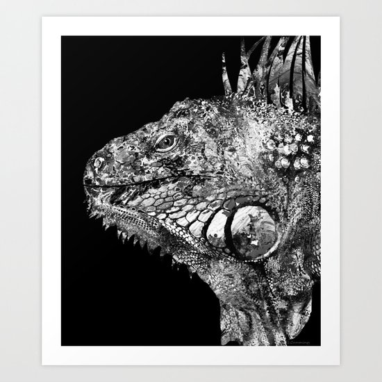 black and white iguana art one cool dude 2 sharon cummings art print by sharon cummings. Black Bedroom Furniture Sets. Home Design Ideas