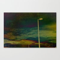 Another Loner Canvas Print