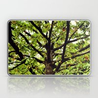 Leaves and Branches Laptop & iPad Skin