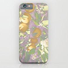 purple oranges iPhone 6 Slim Case