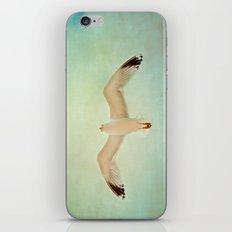 Fly My Dear iPhone & iPod Skin