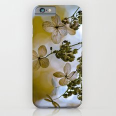 Dry hydrangea Slim Case iPhone 6s