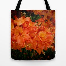 Give me an Orange, Julius Tote Bag