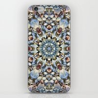 Seashell Kaleidoscope iPhone & iPod Skin