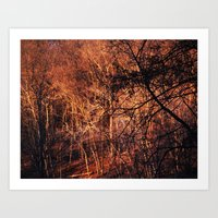 Gold Glowing Forest Art Print