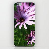 Purple iPhone & iPod Skin