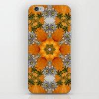 Pumpkin ( Pattern ) iPhone & iPod Skin