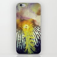 Iris iPhone & iPod Skin