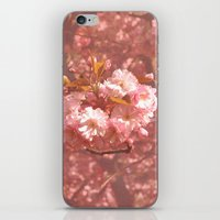 Pink Amongst The Trees iPhone & iPod Skin