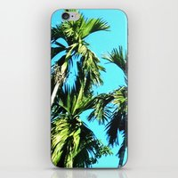 Beetle Nut Tree iPhone & iPod Skin