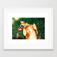 Playful Pup Framed Art Print