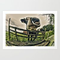 Holy Cow Its A Bull Art Print