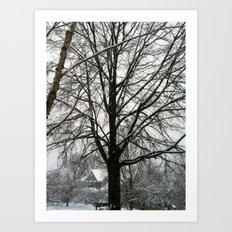 Virginia Winter Art Print
