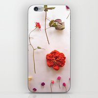 Floral Garden iPhone & iPod Skin
