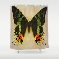 Sunset Moth Wing Shower Curtain