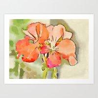 Orange Pélargonium Flowers with Painterly Water Color FX Art Print