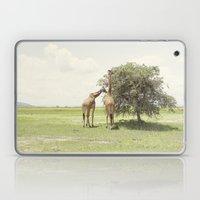 Giraffes::rwanda Laptop & iPad Skin