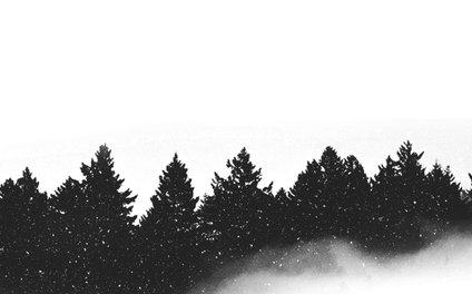 Art Print - let it snow - Rui Faria