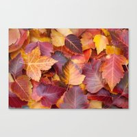 Autumn's Carpet Canvas Print