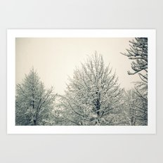 Sugar Coated Art Print
