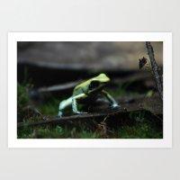 Poison Dart Frog Mint Te… Art Print
