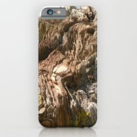 iPhone & iPod Case featuring Big Rock by the beach by Bret Caiazzi