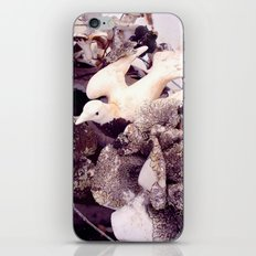 Dove iPhone & iPod Skin