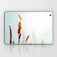 Nature Blue Reeds Laptop & iPad Skin