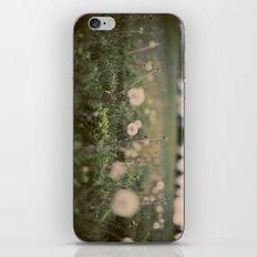 Forgotten Wishes iPhone & iPod Skin
