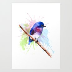 Small bird Art Print