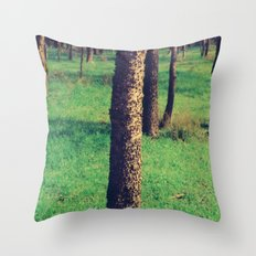 Silvan Throw Pillow