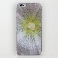Etoile Des Neiges / Merr… iPhone & iPod Skin