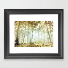Lothlórien Framed Art Print