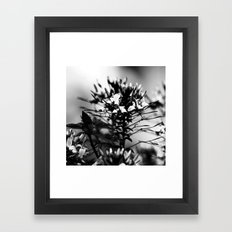 Untitled I. Framed Art Print