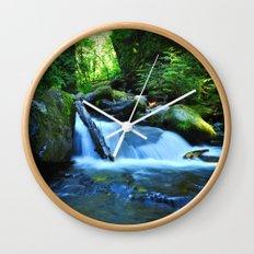 Nature's Remedy Wall Clock
