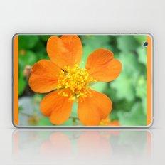 Orange Flower Photography Laptop & iPad Skin