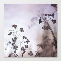 nuance Canvas Print