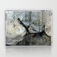Silver Laptop & iPad Skin