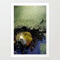 Yellow Leaf In The Water Art Print