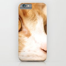 My cat iPhone 6 Slim Case
