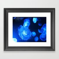 Jelly Fishes Framed Art Print