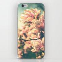 Spring Equinox iPhone & iPod Skin