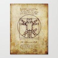 Vitruvian Cat Canvas Print