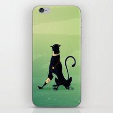 Sabre iPhone & iPod Skin