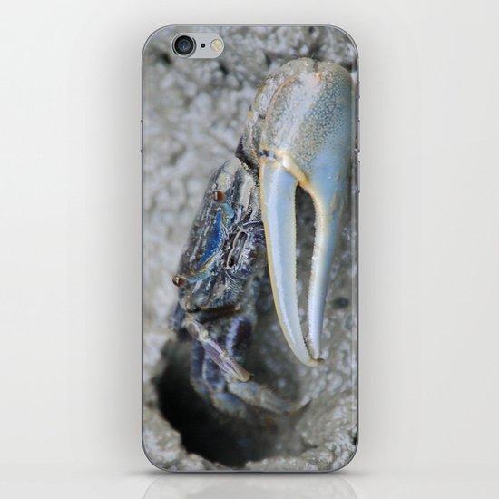 Fiddler's Guard iPhone & iPod Skin