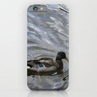 iPhone & iPod Case featuring Mallard by Jasmine Cupp